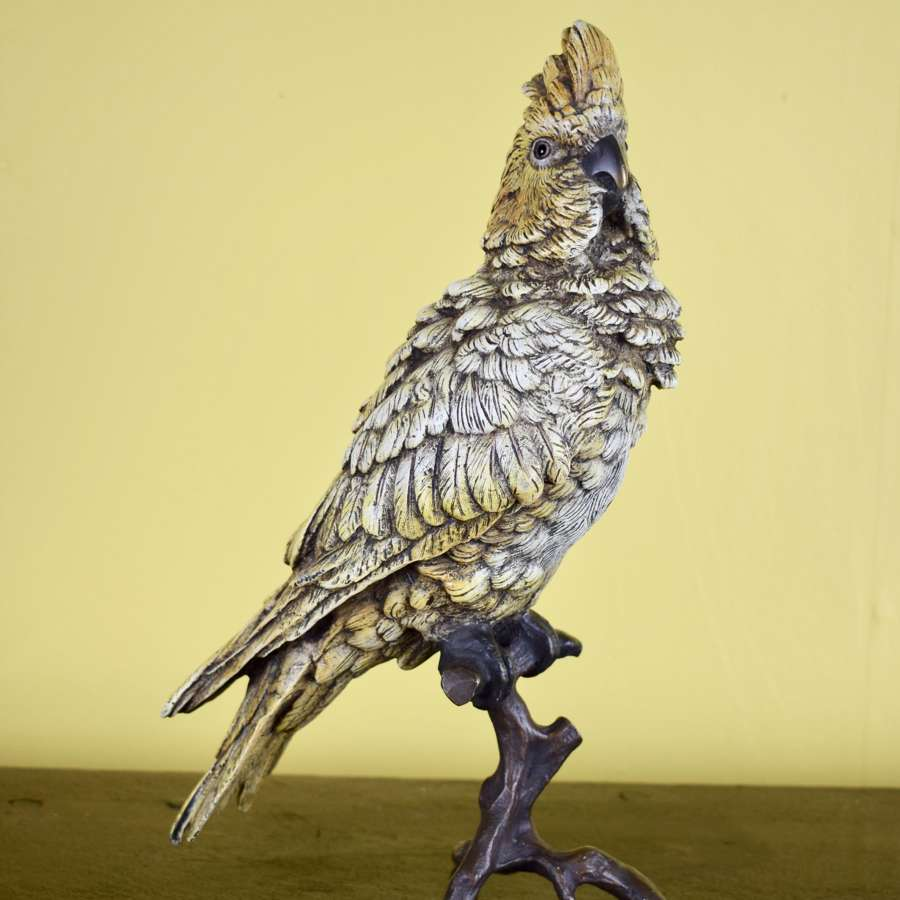 Austrian Cold Painted Bronze Cockatoo by Franz Bergman
